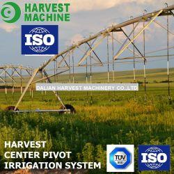 Irrigazione di agricoltura di risparmio dell'acqua