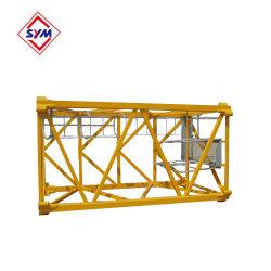 Construção grua-torre peças da máquina Mastro Sym L46A1