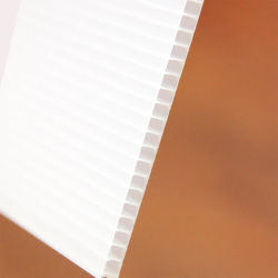 Feuille de carton ondulé en plastique en plastique ondulé en carton ondulé en polypropylène