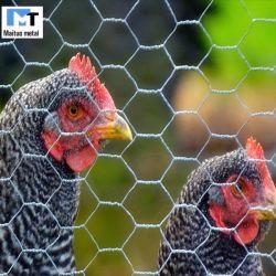 치킨 와이어 직류 전기를 통한 /PVC를 위한 6각형 철망사 또는 그물세공은 입혔다