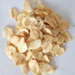 乾燥粉末ガーリック 8-16 メッシュ