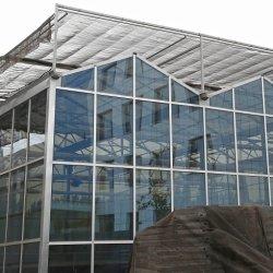 Floatglas-Gewächshaus mit wachsendem Systems-Wasserkulturbehälter