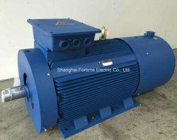 Yvf2 Y2vp AC van de Convertor VFD van de Snelheid van de Frequentie van het Lage Voltage van Yjp Ysp Yp2 Veranderlijke Regelbare Motor