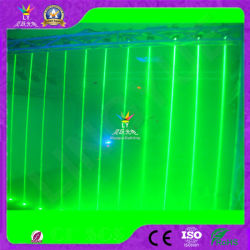 Luce laser della pioggia di RoHS del CE