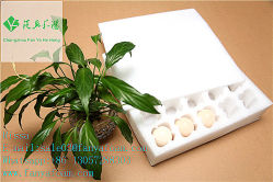 EPEの泡の卵か落下に対して保護袖を包むフルーツの皿
