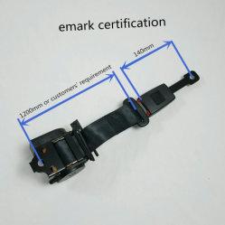 Emark 증명서 안전 벨트 2개 점