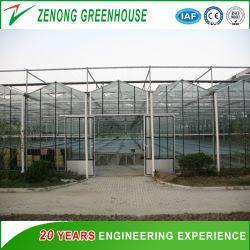 Huis van de multi-Spanwijdte van het Glas van Venlo het Intelligente Groene voor Tuinbouw/de Markt van de Bloem/Ecologisch Restaurant