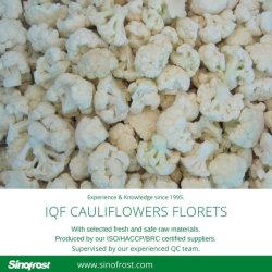 Gefrorene Blumenkohle, IQF Blumenkohle, IQF Schnitt-Blumenkohle, gefrorene Schnitt-Blumenkohle, IQF BlumenkohlFlorets, gefrorene BlumenkohleFlorets, IQF gefrorene Blumenkohle