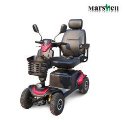 سيارة كهربائية تعمل بثلاث عجلات وعجلة معاقين (DL24800-1)