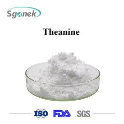 La production de gros tas de poudre Theanine 3081-61-6 Acide nitrilotriacétique Theanine Theanine Extrait de thé vert