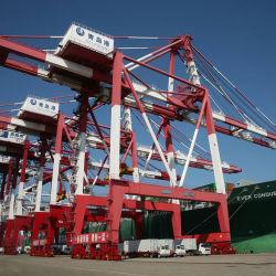 China-Behälter-Seeverschiffen-Fracht von Shanghai nach Neuseeland