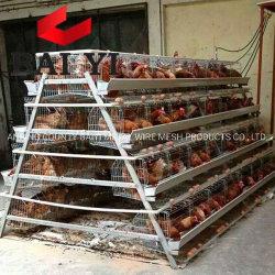Gabbie di batteria calde dell'azienda agricola di pollo dell'Uganda di vendita per gli strati
