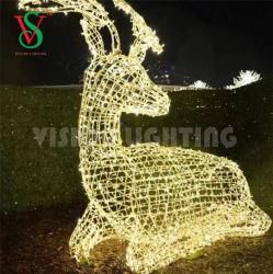 Grande piscine rennes de Noël de l'éclairage des feux de Motif Zhongshan Vision