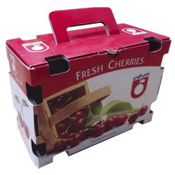 Boîte d'emballage en carton ondulé de fruits (GL013)