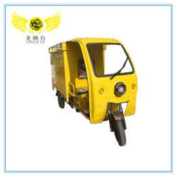1000watt 3 Voertuig Met drie wielen en Uitdrukkelijke van de Diepvriezer van Wielen het Elektrische