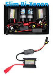 AC de alta calidad Super Slim 35W bombilla de xenón HID Kit (12V/24V/35W/55W)