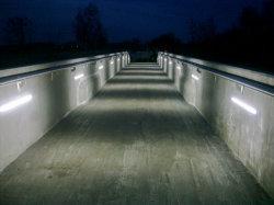 Outdoor 50cm 12W haut indice de rendu des couleurs d'éclairage LED
