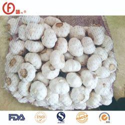 5~6см хорошего качества FDA ослепительно белый чеснок для США