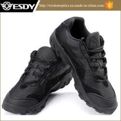 Esdy militaire la plus récente agression de la formation tactique&Outdoor chaussures de combat