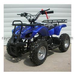 2020 de Nieuwe Ce Goedgekeurde 500With800With1000W Elektrische MiniFabriek van Jonge geitjes ATV