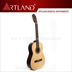 小ぎれいな上のシナノキのBack&Sideの標準的なギター(CG965)