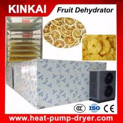 Tipo de cámara de secado de aire caliente de las frutas y hortalizas de pelo