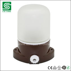 浴室のための陶磁器ランプのホールダーが付いているColshineのサウナランプ