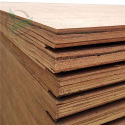 Die lamellierten ABS imprägniern Keruing Verschiffen-Furnierholz für Behälter-Bodenbelag