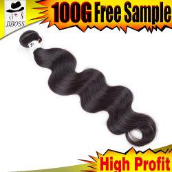 De Stukken van het haar van Braziliaans Gouden Haar in 613#