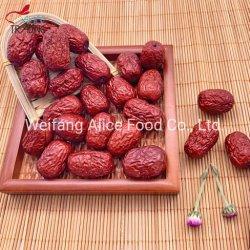 Jujube rouge chinois prix bon marché prix en vrac Jujube Santé organiques séchés