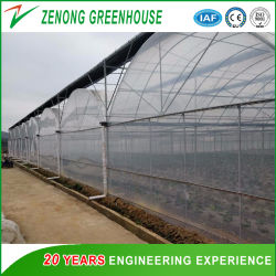 جودة جيدة مواد الدفيئة مع أسعار مناسبة للترويج