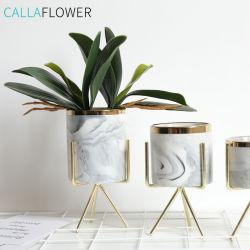 Orquídea artificial deixa Phalaenopsis verdadeiro toque em folhas de plantas em casa