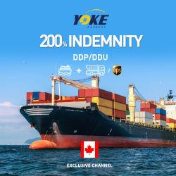 중국에서 캐나다 병참술 서비스 바다 출하에 DDP/DDU 바다 해운업자