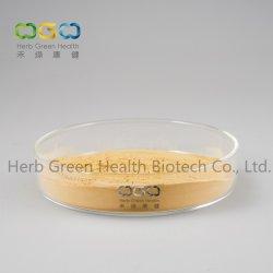 Extrait de plante naturelle Lilyturf Nain pour la santé cardiovasculaire et de protéger l'estomac Herb Herbal