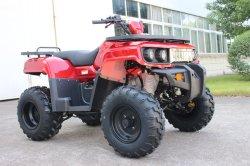 CVT CEE Racing Motor 200cc Taiwán ATV (KD 200A-1)