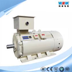 5.5Kv de media tensión de 185 Kw Motor de inducción de jaula de ardilla con las especificaciones técnicas y dimensionales Dibujo para maquinaria y equipo eléctrico Industrial