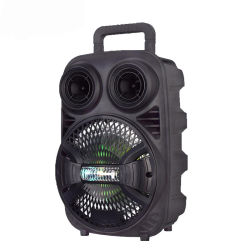 Private Mold draadloze Bluetooth draagbare Trolley luidspreker Trolley luidspreker met Opnamefunctie
