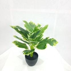 Factory Outlet plante décorative en plastique de Simulation de petites Bonsai