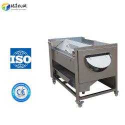 La yuca industrial Jengibre Zanahoria de lavado de Boniato pelado la máquina (TS-M600)