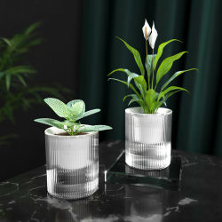 Ruipu ( GX )中国創造的な自水の花の鍋