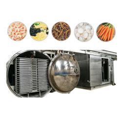 100m2 Vakuum-Gefriertrockner-Lyophilisator für die Lebensmittelindustrie
