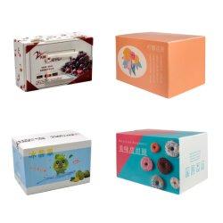 Twin Wall/Hollow/Coroplast/Corflute/crugated/plastic sheet Turnover/Shopplable/Packaging/Storage/Shipment Fruit & Vegetable Custom Carton 상자