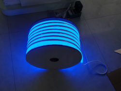 Ce RoHS LVD EMC de deux ans de garantie Flex Néon led bleue