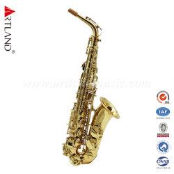 Laca oro Alto saxofón (AAS4505G) con el caso