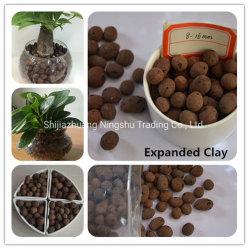 Les billes en céramique pour les plantes en pot élargi ou de décoration de drainage