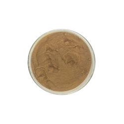 Polvere degli enzimi della papaina dell'estratto della papaia di alta qualità
