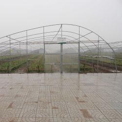 둥근 까만 강관 온실 관통되는 관
