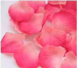 تباينت بتلات الوردي الحرير تدريجيًا لتقديم حفلات الزفاف