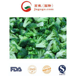 Venta caliente congelado IQF el brócoli y congelados vegetales