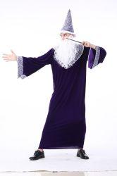 リングの豪華なHalloweenの衣裳の衣裳の大人の主
